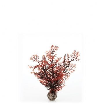 Biorb Sea Fans Crimson